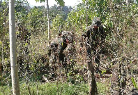Dos efectivos de las fuerzas de tarea conjunta erradican plantaciones de coca ilegal en el TIPNIS.