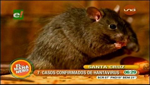 El Sedes envía brigada a Guarayos para frenar casos de hantavirus b