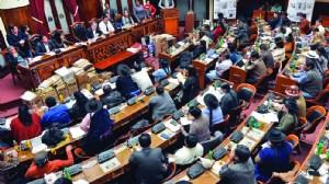 El Legislativo, controlado por el MAS, da al TCP el visto bueno para la reelección