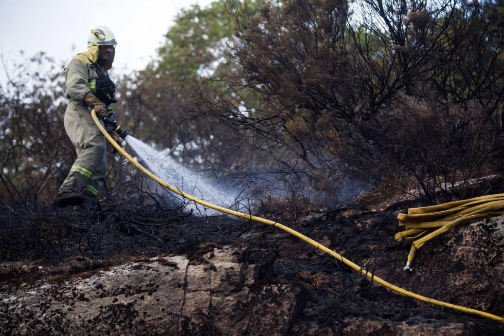 Un bombero forestal trabaja en un incendio en Parada do Sil (Ourense), la semana pasada.