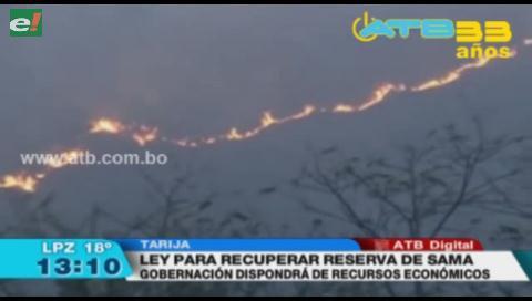 Tarija promulga ley para recuperar la serranía Sama tras incendio forestal