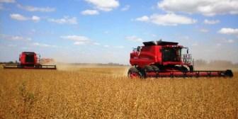 La agricultura se estanca por falta de planificación