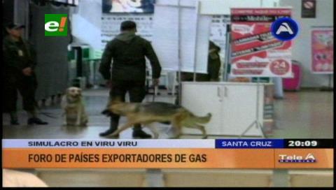 Presidente de Rusia no asistirá a cumbre del gas en Santa Cruz