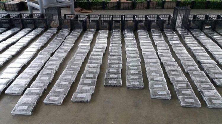 Los paquetes de droga estaban ocultos en contenedores de plástico, que sirven para transportar frutas y verduras.