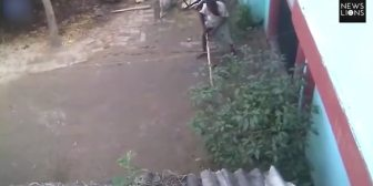 Las dramáticas imágenes de un hombre luchando con un leopardo en India