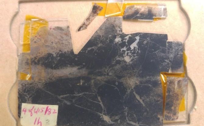 Hallan señales de vida de hace 3500 millones años