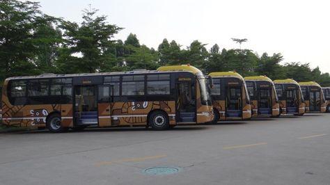La flota de buses del servicio PumaKatari.