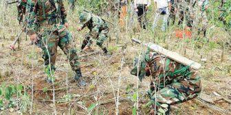 El Gobierno inicia este jueves la erradicación de coca ilegal con el desafío de eliminar 7.000 has