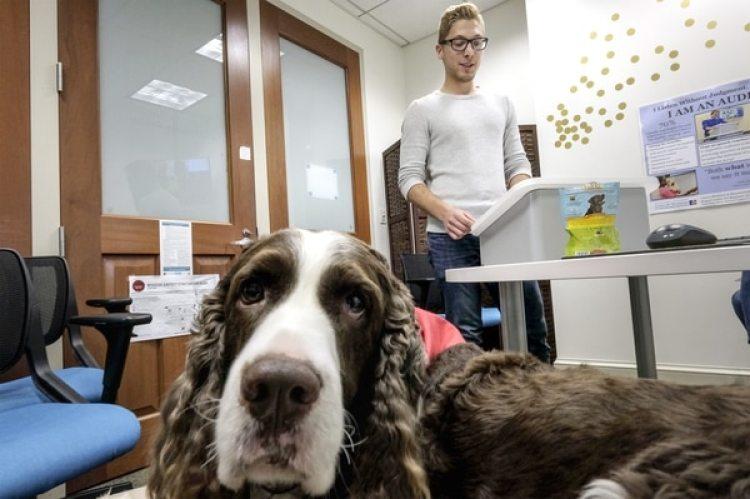 Devon Wallick durante una sesión de práctica en presencia de Dexter, un perro springer spaniel de cuatro años (The Washington Post / Bonnie Jo Mount)
