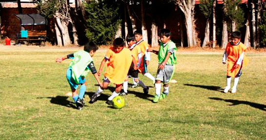 Resultado de imagen para fundación Gol Bolivia