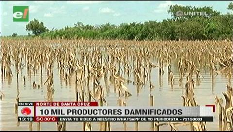 Emergencia en el agro: hay 130.000 hectáreas de siembra bajo el agua en Santa Cruz