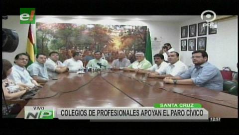 Santa Cruz: Profesionales apoyan las movilizaciones y el paro cívico del viernes