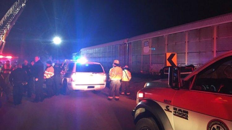 El presunto accidente ocurrió en el medio de la noche (@LCSD_News)