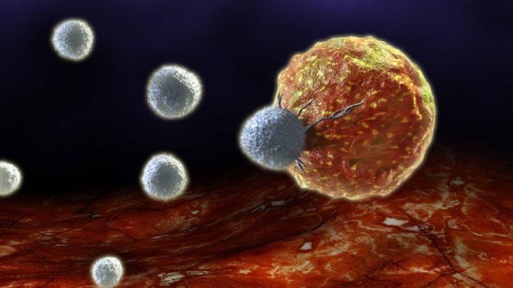 El estudio se realizó analizando los datos de dos millones de casos de cáncer en edades comprendidas entre los 18 y los 70 años