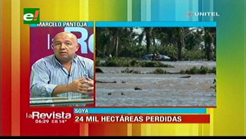 Anapo: 24 mil hectáreas de producción se perdieron por las intensas lluvias