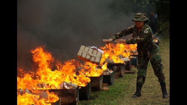Resultado de imagen para destruccion de marihuana bolivia