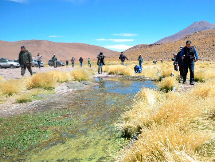 Morales: Bolivia no admite que el Silala sea un río internacional