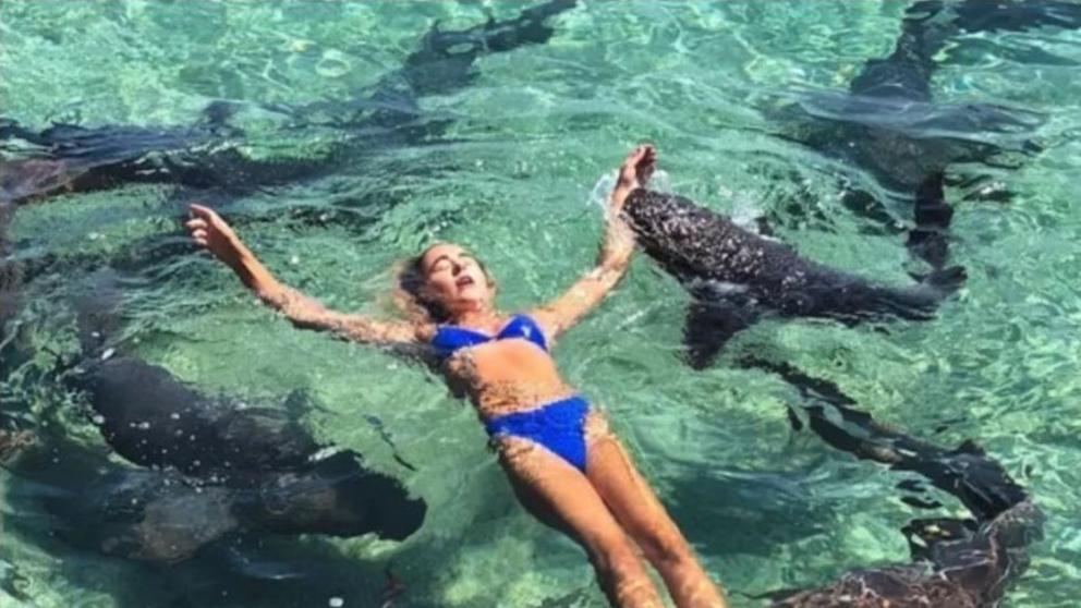 Un tiburón muerde a una modelo en una sesión de fotos en las Bahamas