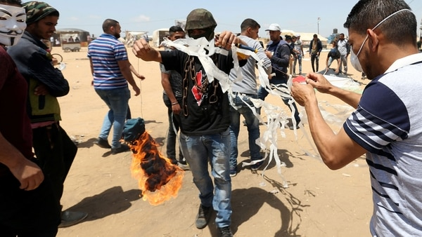 Palestinos utilizan aves para atacar a Israel