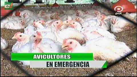 Video titulares de noticias de TV – Bolivia, noche del martes 3 de julio de 2018