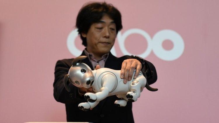 La mascota robot comenzó a estar disponible en Japón a principios de este año, más de una década después de eliminar modelos anteriores de su línea de productos