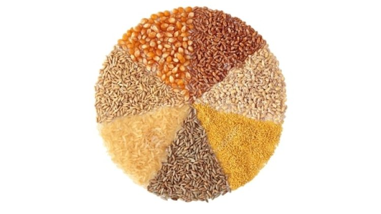 Europa, Estados Unidos y China, grandes productores de cereales, se verán más afectados que los países en regiones tropicales como Brasil o Vietnam, donde los insectos ya están aprovechando al máximo las condiciones climáticas