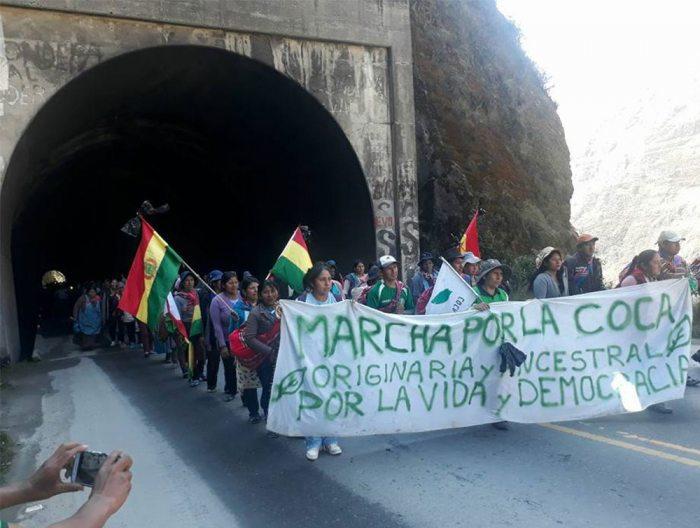 La marcha de cocaleros de Los Yungas llega hoy a la ciudad de La Paz.