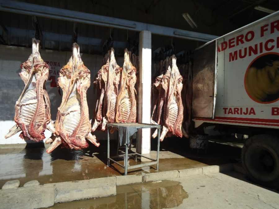 Piden construir nuevo matadero en Tarija