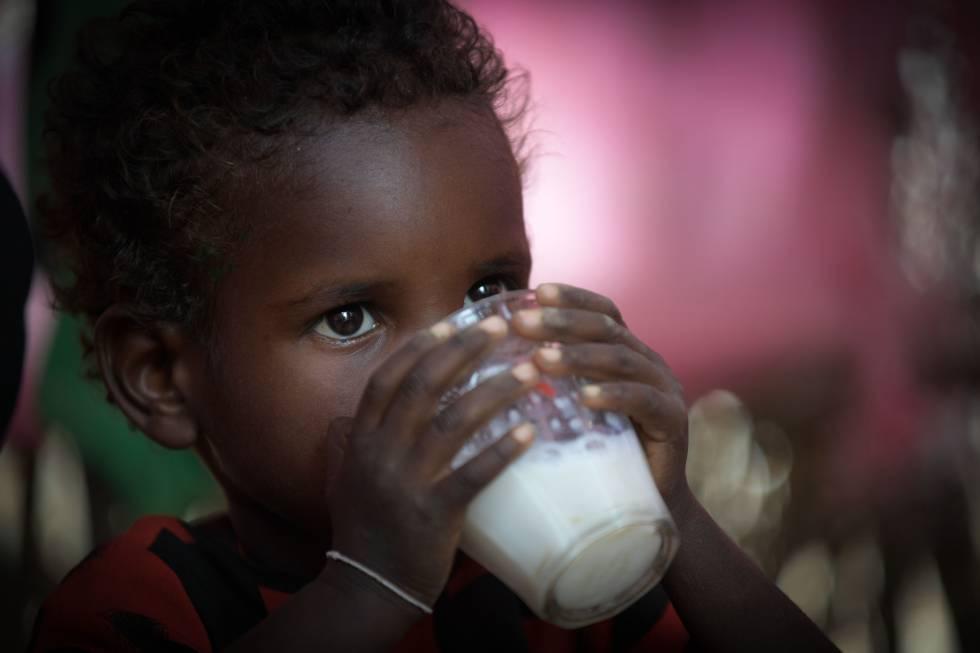 El número de niños que sufren retraso en el crecimiento ha caído, es una de las pocas buenas noticias que arroja el informe de la FAO de este 2018.