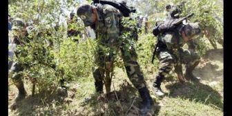 Paralizan la erradicación de coca ilegal en La Asunta, por brote de hantavirus