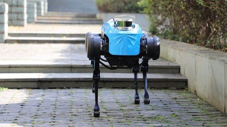 """El perro robot """"Jueying"""" de la Universidad de Zhejiang en el este de China (Foto: Xinhua)"""