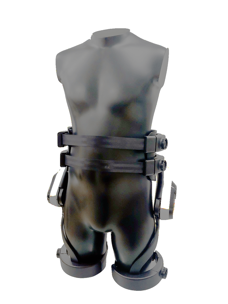 Exoesqueleto de LG