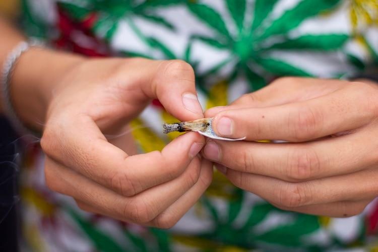 Marihuana recreativa (foto: Matias Baglietto)