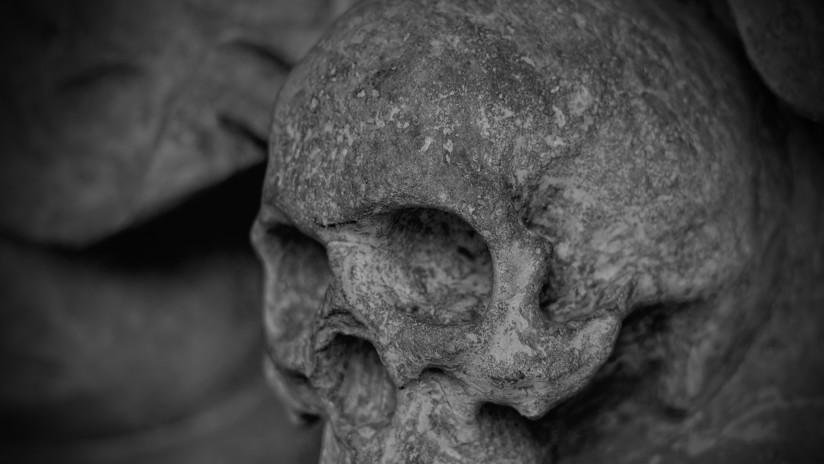 Dientes fosilizados revelan que nuestra especie se separó de los neandertales mucho antes de lo que se creía