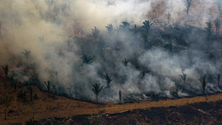 Humo ocasionado por Incendio en Amazonas llegó hasta Montevideo — MUNDO