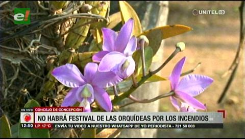 Concepción. No habrá festival de las Orquídeas ni festejos por efeméride cruceña
