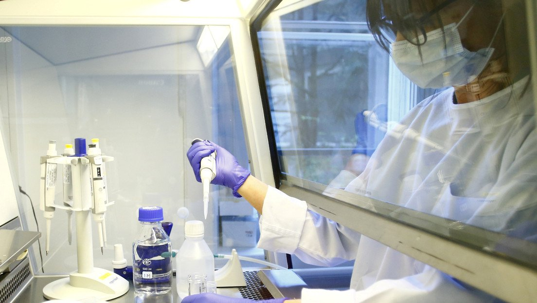 Laboratorio en EEUU desarolla anticuerpo que bloquea al covid-19