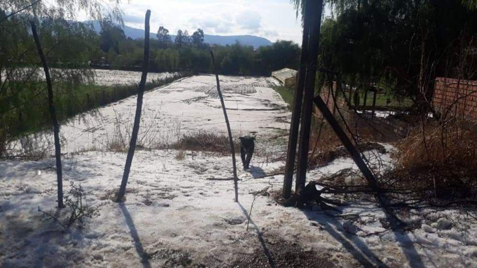 Productores reportan 7 zonas afectadas en Tarija por primeras lluvias