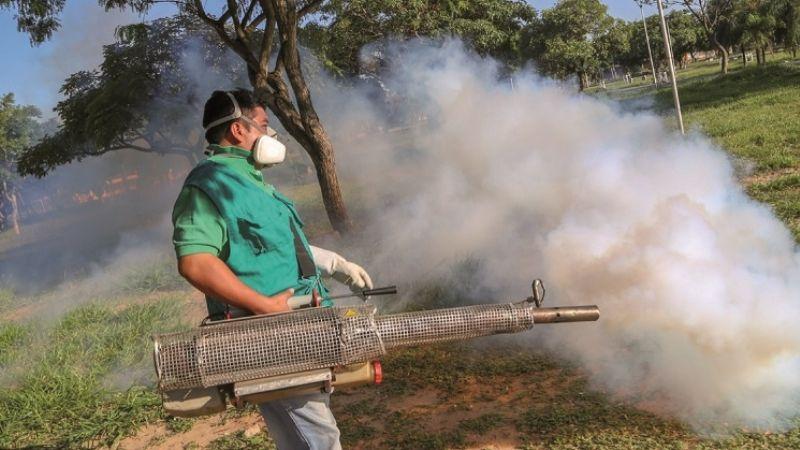 Covid-19 y dengue, juntos son un peligro mortal que alarma a tres departamentos
