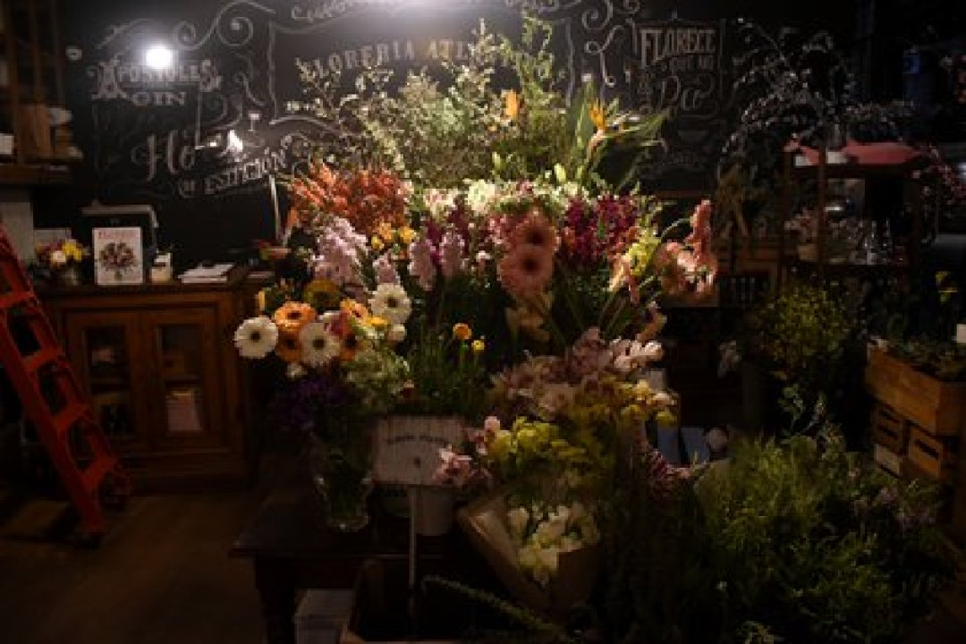 Detrás de la florería hay una puerta que lleva al sótano donde está el famoso bar de Tato Giovannoni (Nicolás Stulberg)