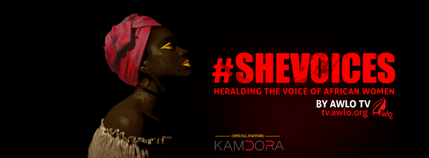 #shevoices banner
