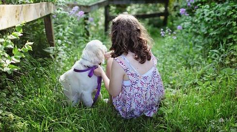 حكم تربية الكلاب ولمسها هل ينجس