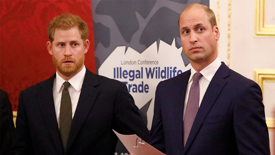 Prince Harry questioned Prince William's 'concern for' Meghan Markle before marriage: Report