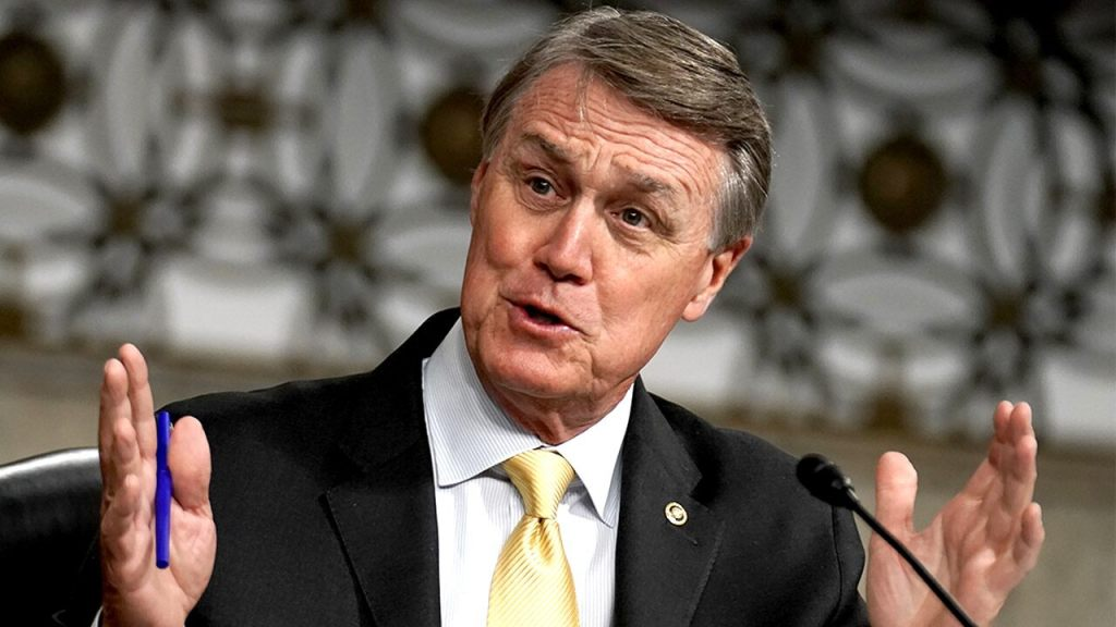 Perdue: Loeffler and I are 'last line of defense' against socialist takeover of Congress