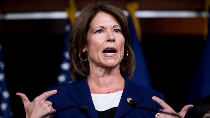 Illinois Dem Cheri Bustos not running for re-election in competitive seat