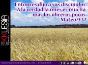 Mateo 9:37