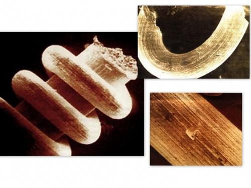Découverte impossible - Objets métalliques spiralés
