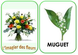 Imagiers du printemps