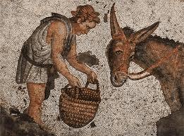 Apulée - L'Ane d'or ou les Métamorphoses
