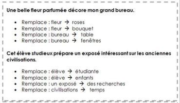 Rituel grammaire / conjugaison / orthographe